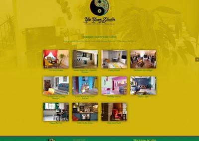 Yin Yang Studio Proiecte