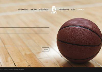 Alin-Andries-contact-web-sichitiu