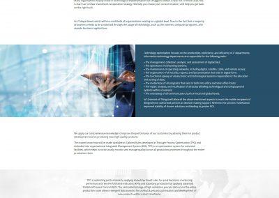 BSOC-servicii-dezvoltare-web-sichitiu